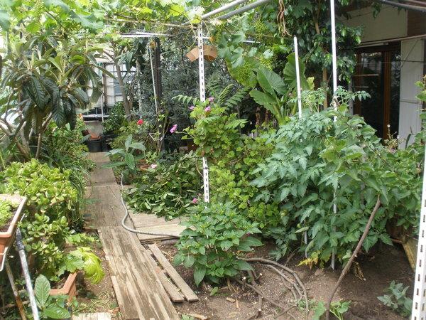Aconseguit conseguido el jard n escondido for El jardin escondido